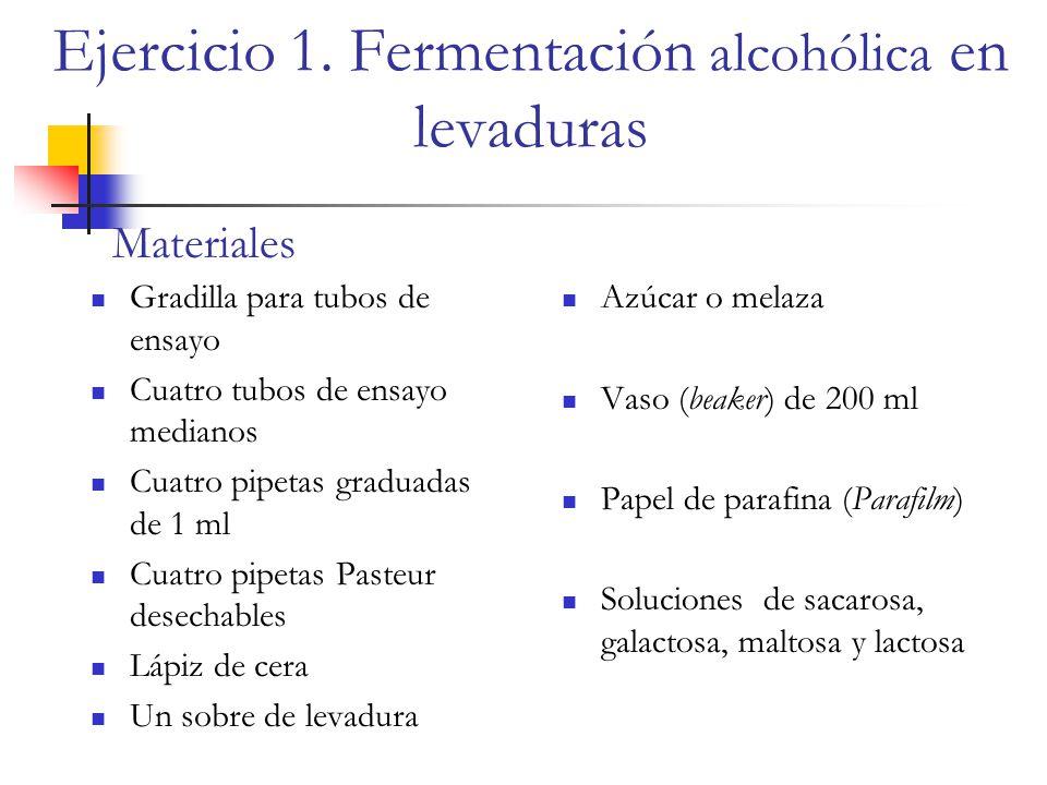 Ejercicio 1. Fermentación alcohólica en levaduras
