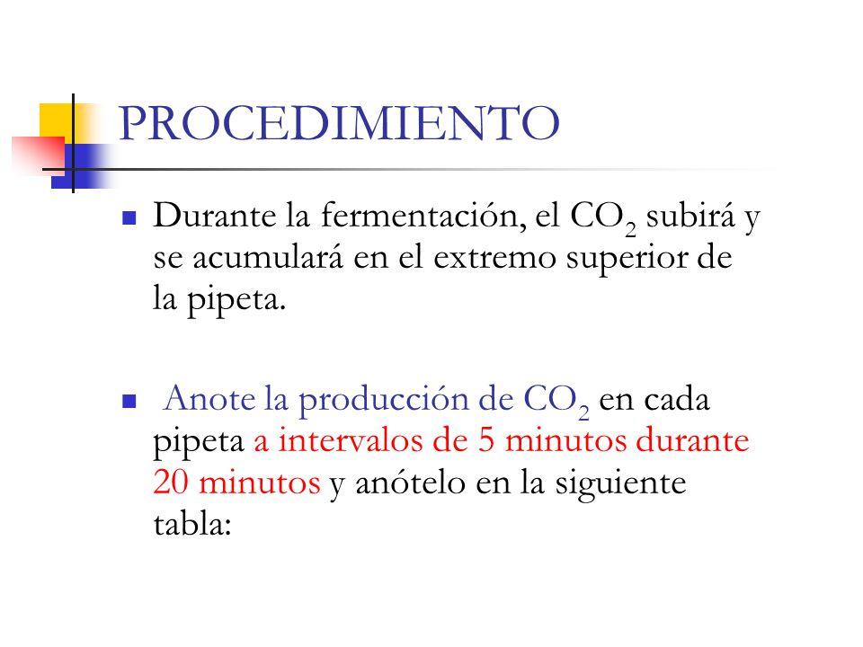 PROCEDIMIENTO Durante la fermentación, el CO2 subirá y se acumulará en el extremo superior de la pipeta.