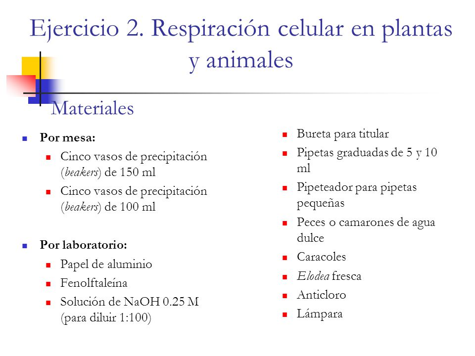 Ejercicio 2. Respiración celular en plantas y animales