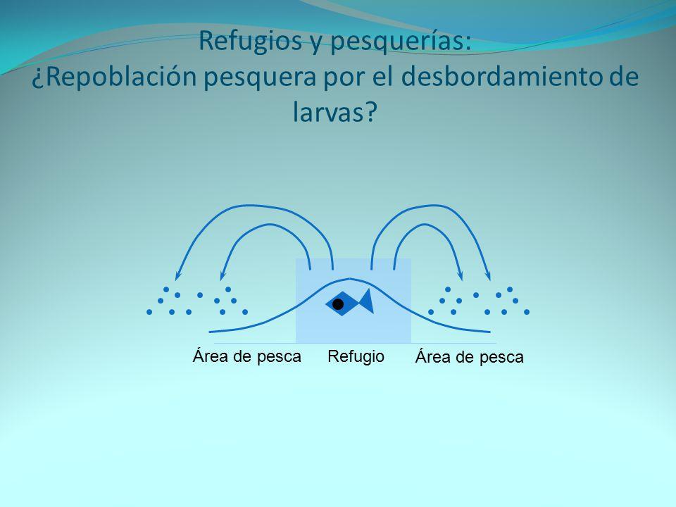 Refugios y pesquerías: ¿Repoblación pesquera por el desbordamiento de larvas
