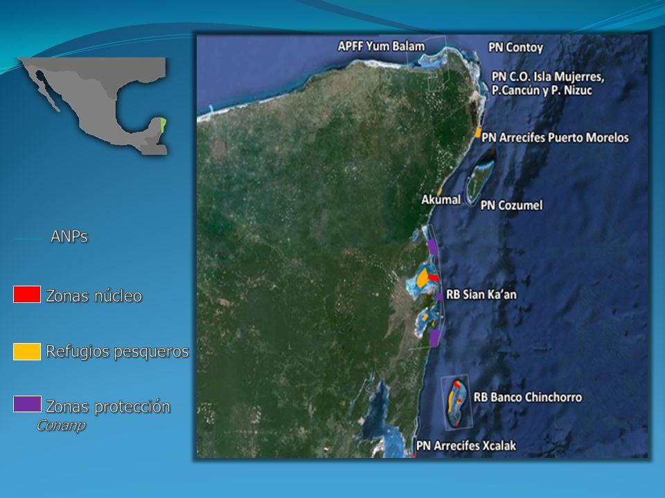 ANPs Zonas núcleo Refugios pesqueros Zonas protección Conanp