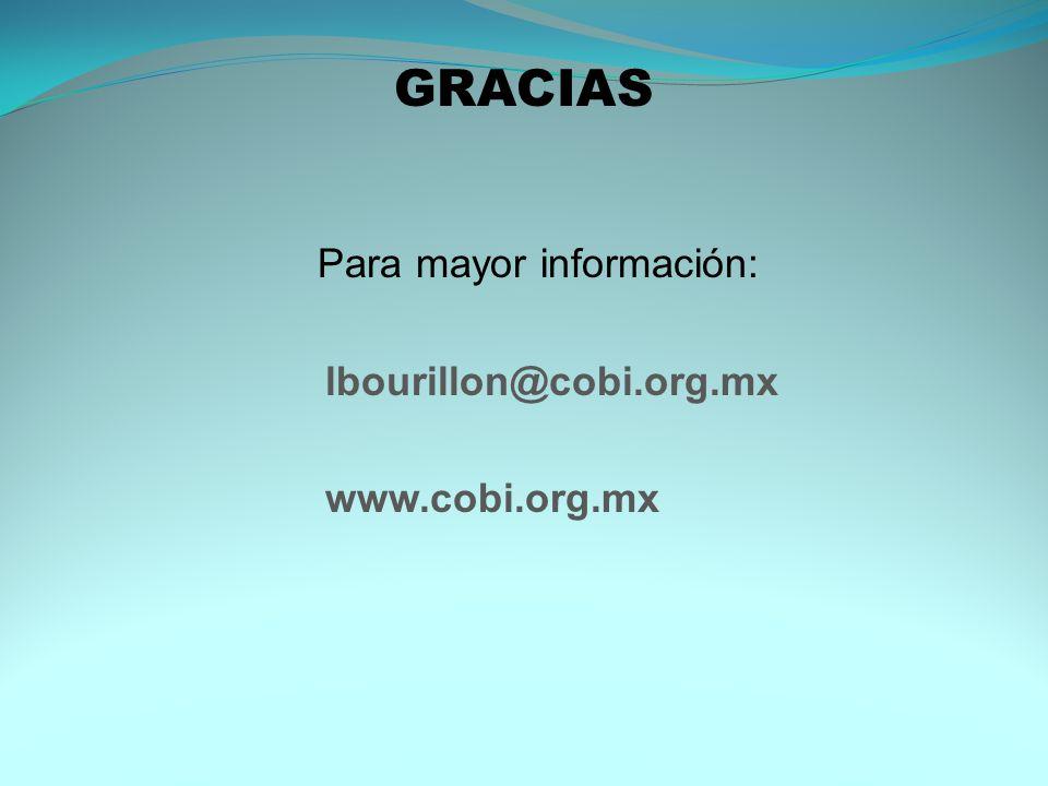 GRACIAS Para mayor información: lbourillon@cobi.org.mx www.cobi.org.mx