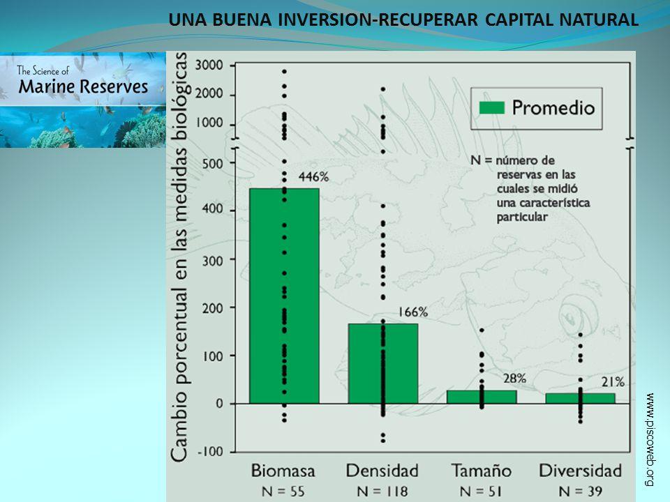 UNA BUENA INVERSION-RECUPERAR CAPITAL NATURAL