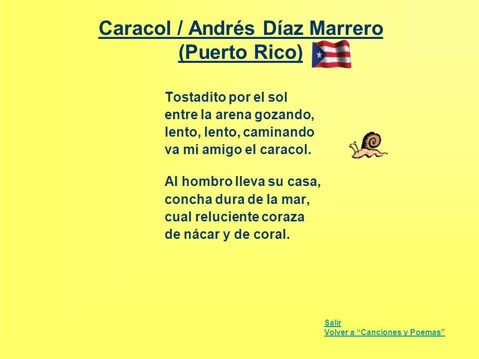 Caracol / Andrés Díaz Marrero (Puerto Rico)