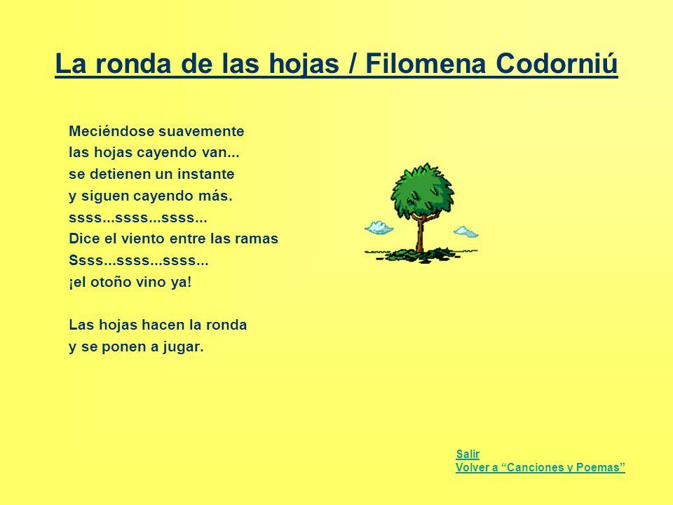 La ronda de las hojas / Filomena Codorniú