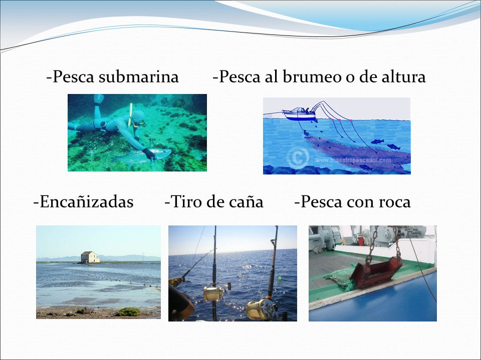 -Pesca submarina -Pesca al brumeo o de altura