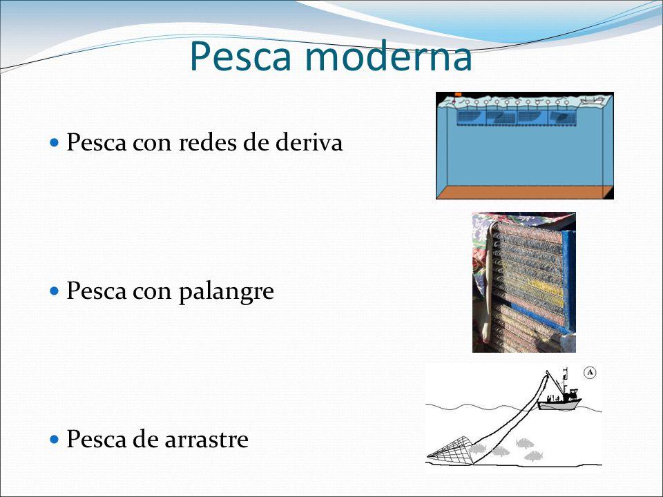 Pesca moderna Pesca con redes de deriva Pesca con palangre