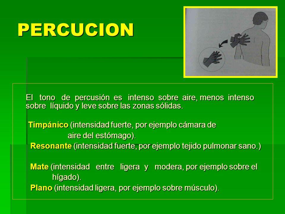 PERCUCION El tono de percusión es intenso sobre aire, menos intenso sobre líquido y leve sobre las zonas sólidas.