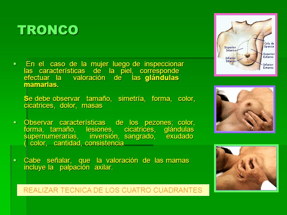 REALIZAR TECNICA DE LOS CUATRO CUADRANTES