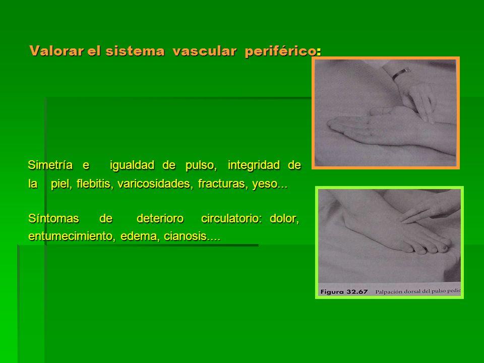 Valorar el sistema vascular periférico: