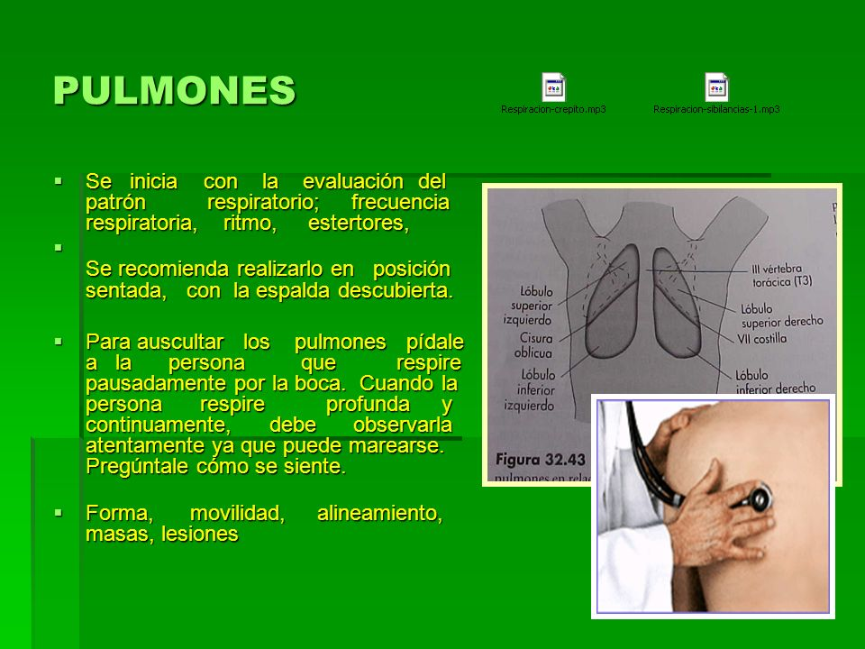 PULMONESSe inicia con la evaluación del patrón respiratorio; frecuencia respiratoria, ritmo, estertores,