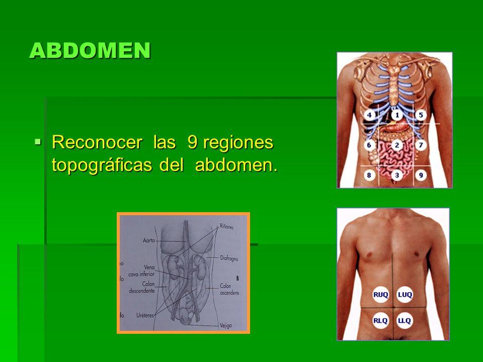 ABDOMEN Reconocer las 9 regiones topográficas del abdomen.