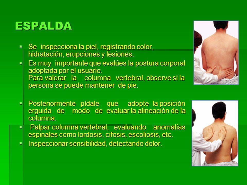 ESPALDASe inspecciona la piel, registrando color, hidratación, erupciones y lesiones.
