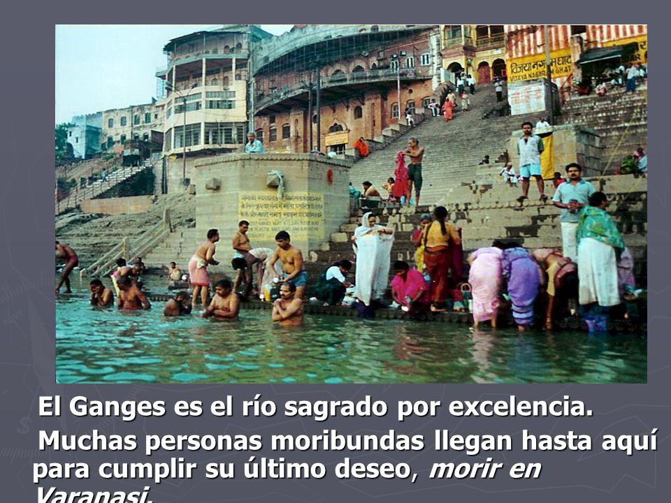 El Ganges es el río sagrado por excelencia.
