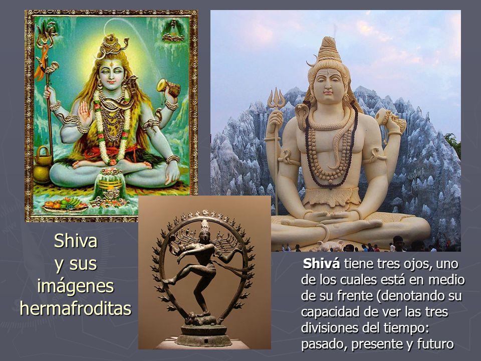 Shiva y sus imágenes hermafroditas