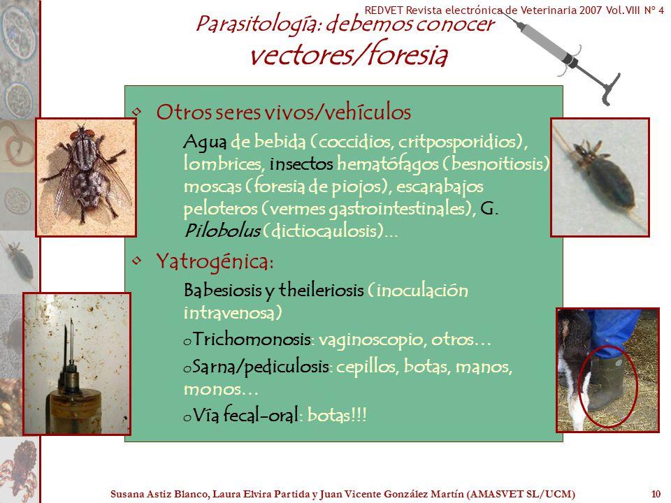 Parasitología: debemos conocer vectores/foresia