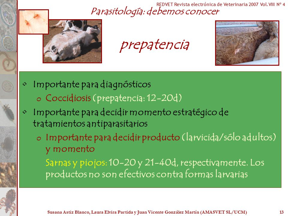 Parasitología: debemos conocer prepatencia