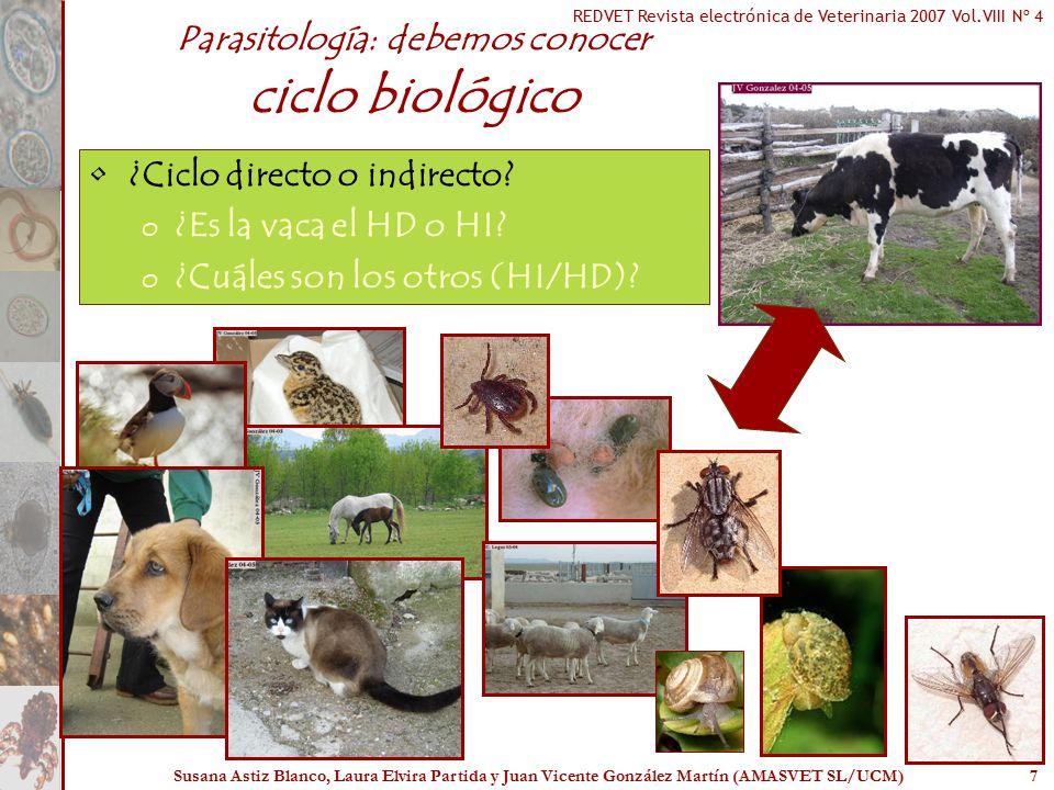 Parasitología: debemos conocer ciclo biológico
