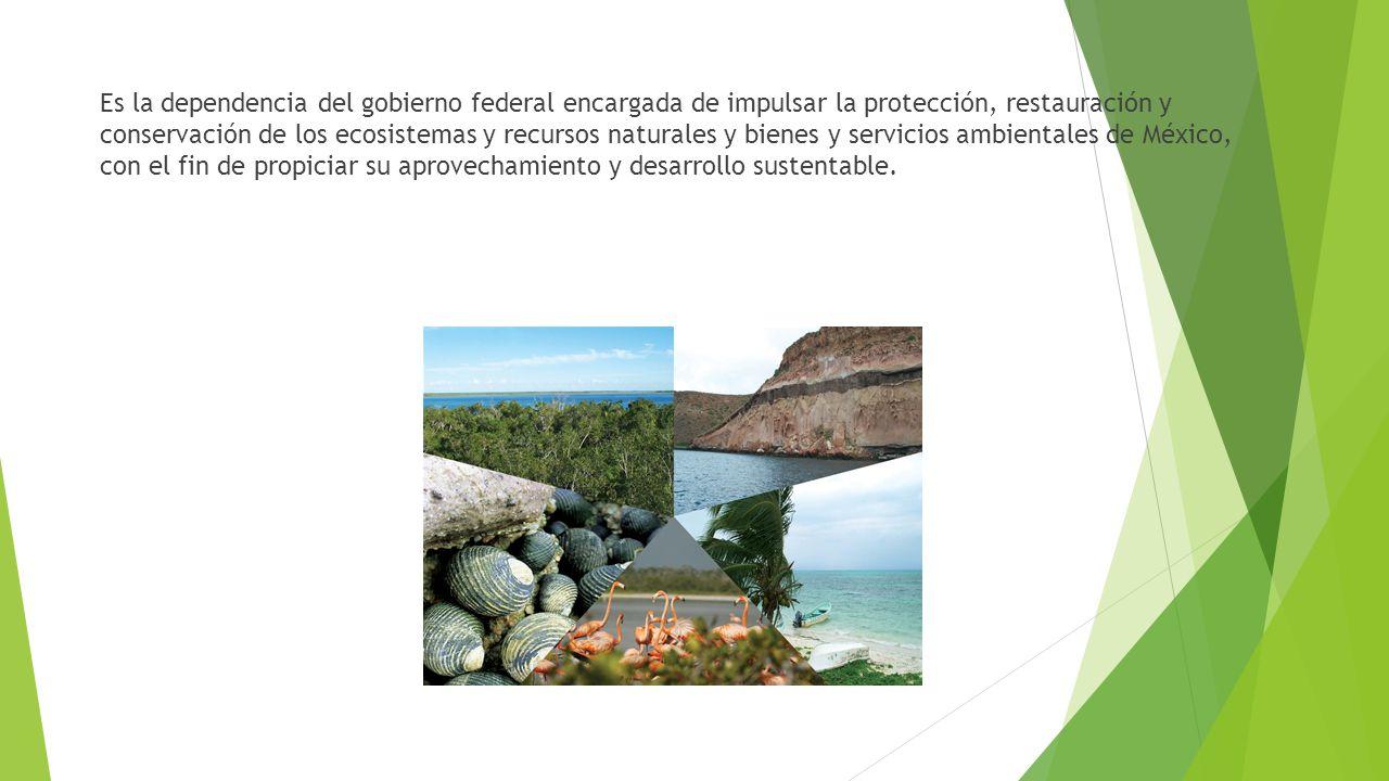 Es la dependencia del gobierno federal encargada de impulsar la protección, restauración y conservación de los ecosistemas y recursos naturales y bienes y servicios ambientales de México, con el fin de propiciar su aprovechamiento y desarrollo sustentable.
