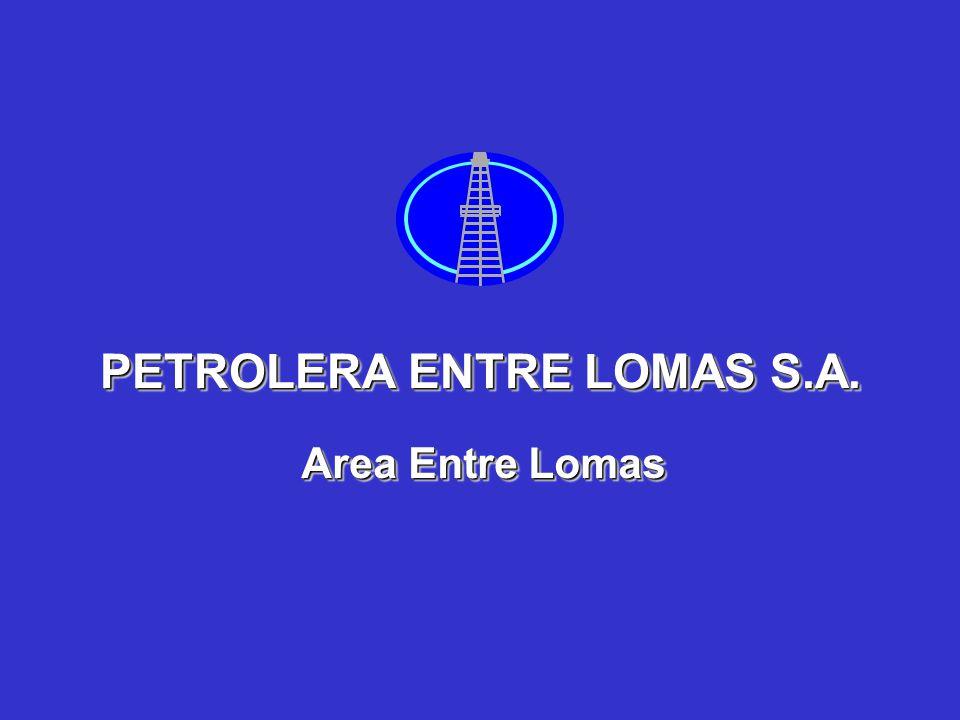 PETROLERA ENTRE LOMAS S.A.