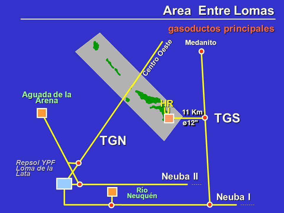 Area Entre Lomas TGS TGN gasoductos principales HRU Neuba II Neuba I