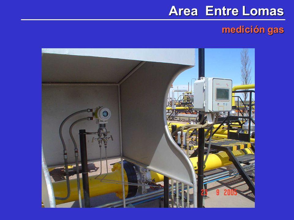 Area Entre Lomas medición gas