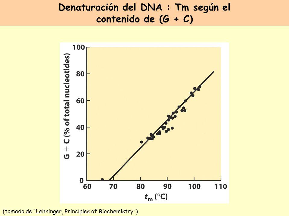 Denaturación del DNA : Tm según el