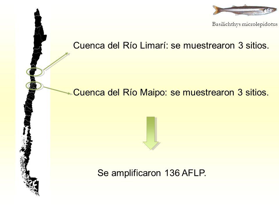 Cuenca del Río Limarí: se muestrearon 3 sitios.