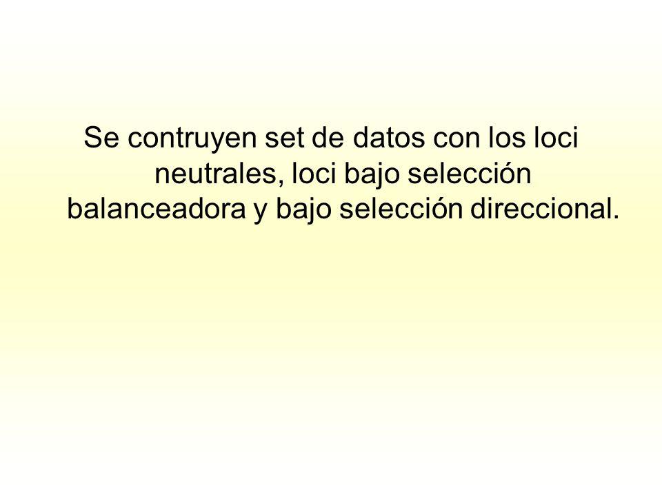 Se contruyen set de datos con los loci neutrales, loci bajo selección balanceadora y bajo selección direccional.