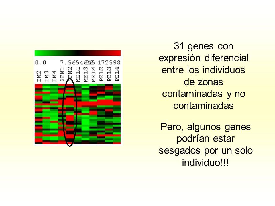 Pero, algunos genes podrían estar sesgados por un solo individuo!!!
