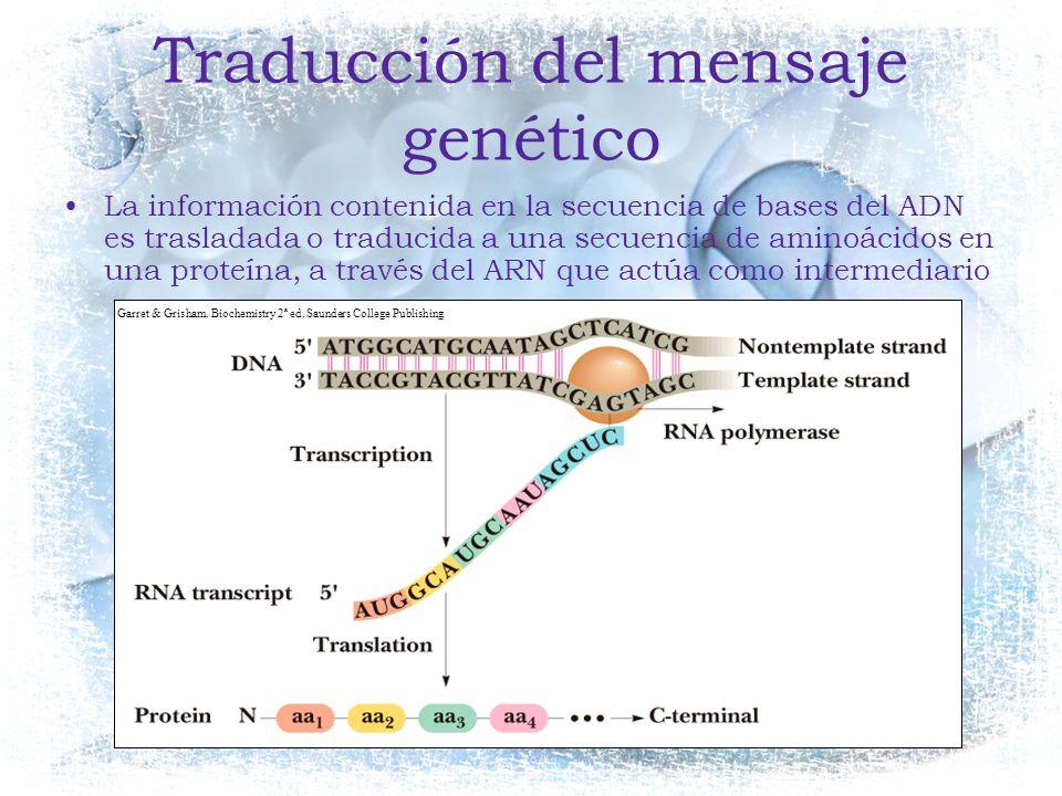 Traducción del mensaje genético
