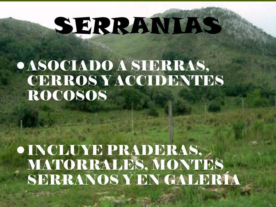 SERRANIAS ASOCIADO A SIERRAS, CERROS Y ACCIDENTES ROCOSOS