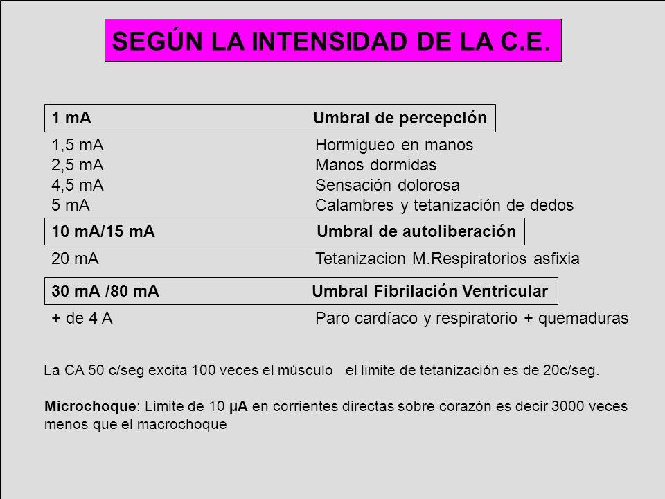 SEGÚN LA INTENSIDAD DE LA C.E.