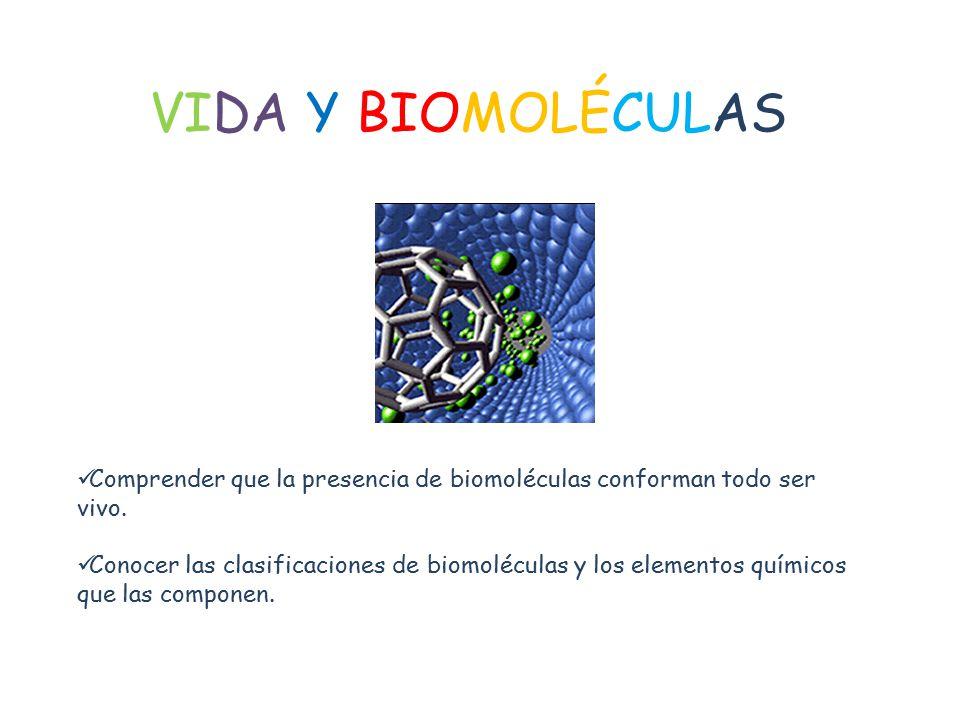 VIDA Y BIOMOLÉCULAS Comprender que la presencia de biomoléculas conforman todo ser vivo.