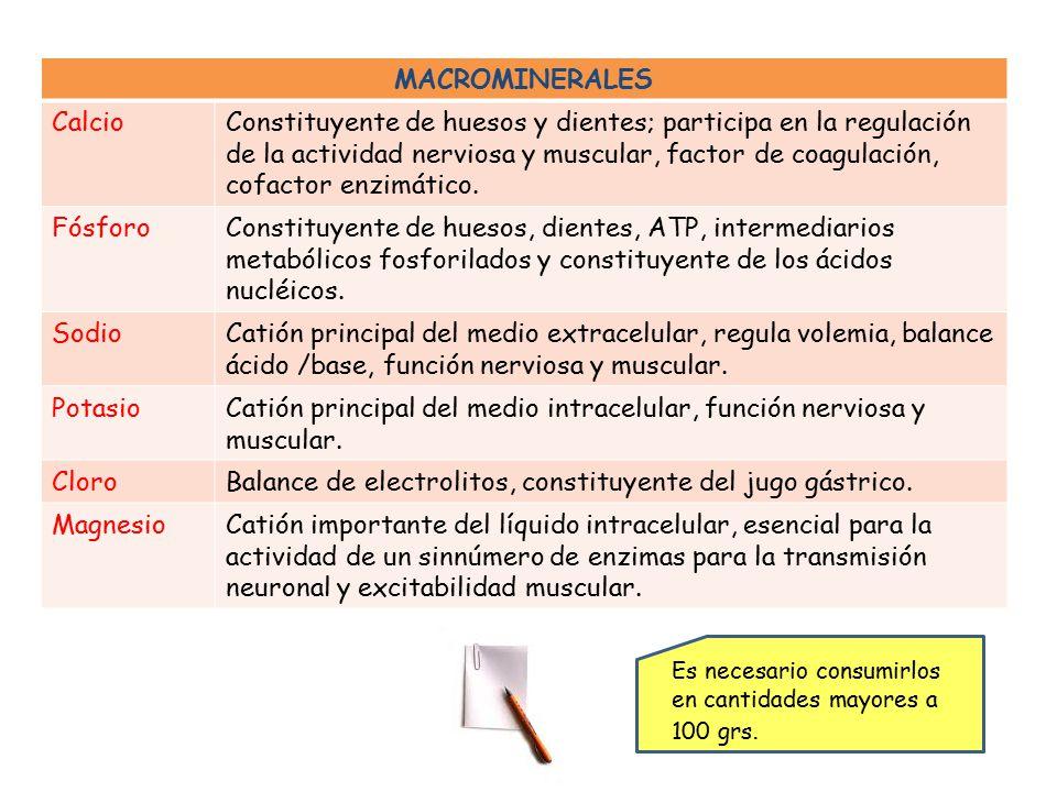 Catión principal del medio intracelular, función nerviosa y muscular.