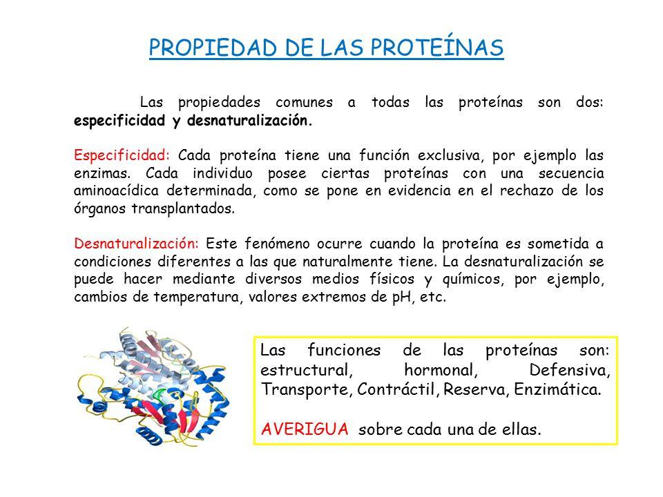 PROPIEDAD DE LAS PROTEÍNAS