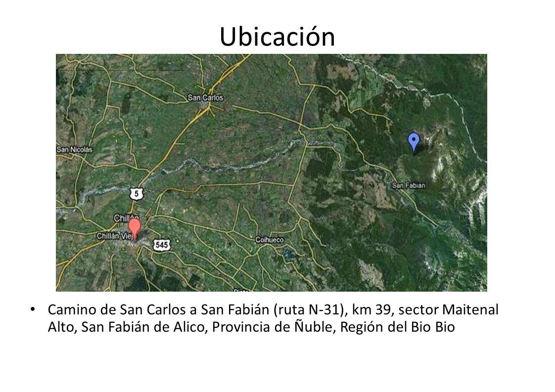 Ubicación Camino de San Carlos a San Fabián (ruta N-31), km 39, sector Maitenal Alto, San Fabián de Alico, Provincia de Ñuble, Región del Bio Bio.