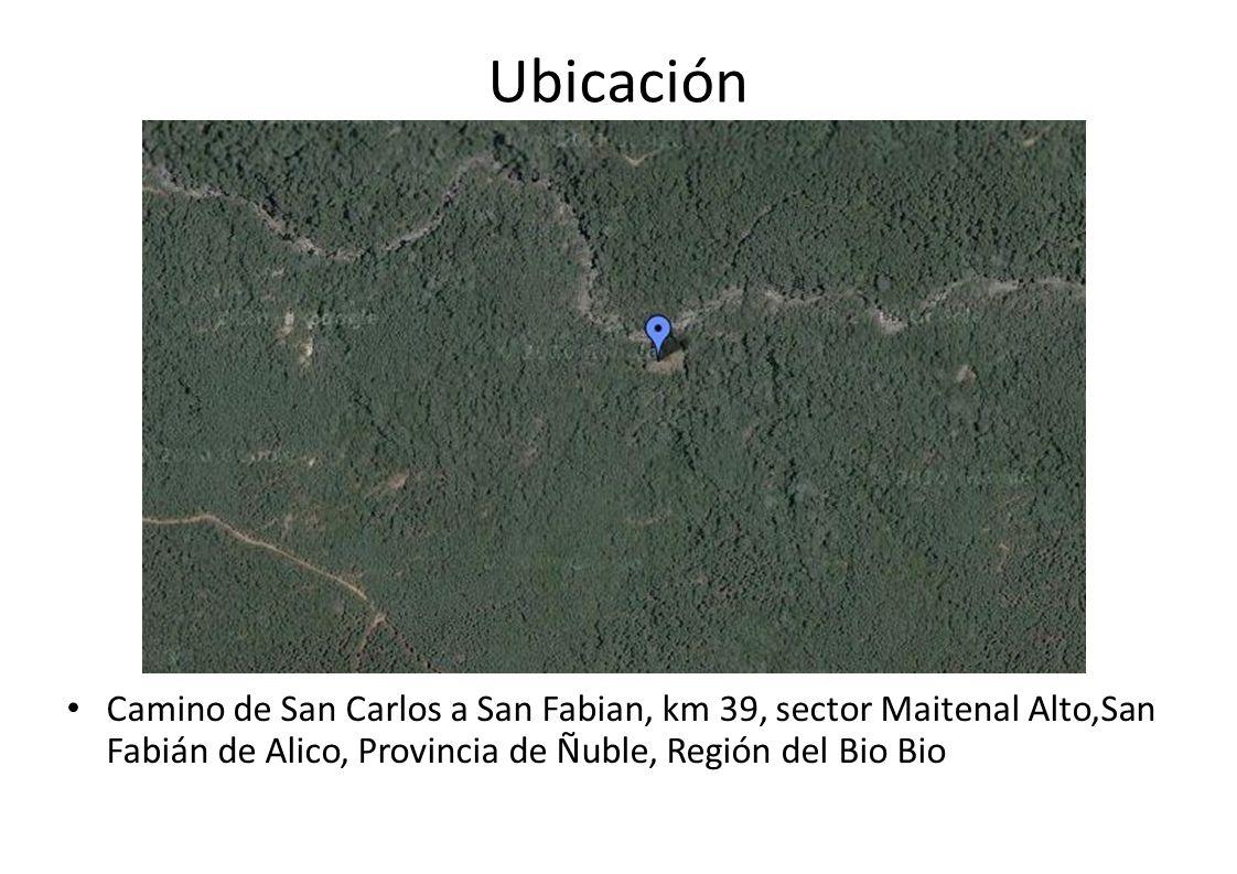 Ubicación Camino de San Carlos a San Fabian, km 39, sector Maitenal Alto,San Fabián de Alico, Provincia de Ñuble, Región del Bio Bio.