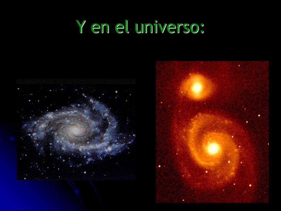 Y en el universo: