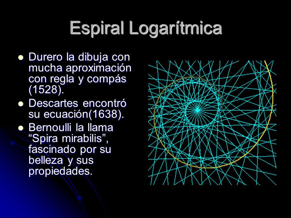 Espiral Logarítmica Durero la dibuja con mucha aproximación con regla y compás (1528). Descartes encontró su ecuación(1638).