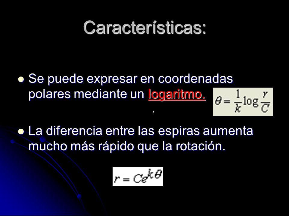 Características: Se puede expresar en coordenadas polares mediante un logaritmo.