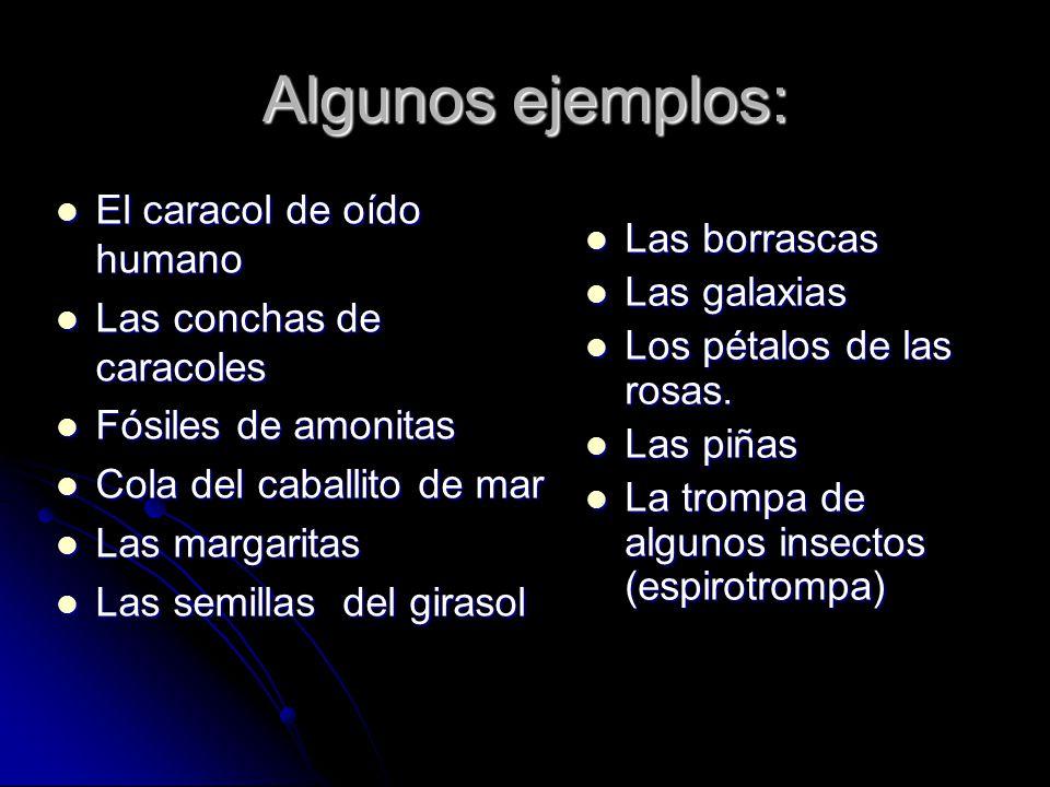 Algunos ejemplos: El caracol de oído humano Las borrascas