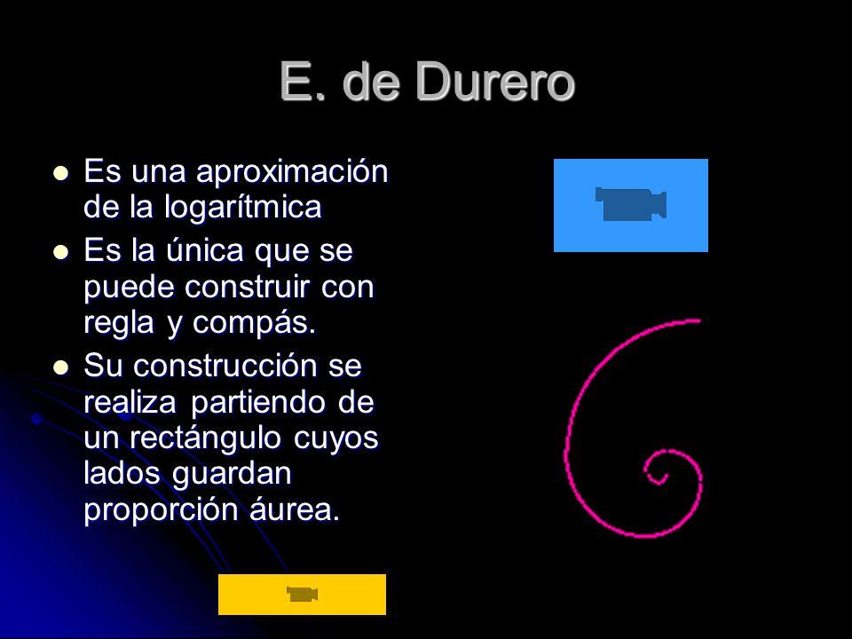 E. de Durero Es una aproximación de la logarítmica