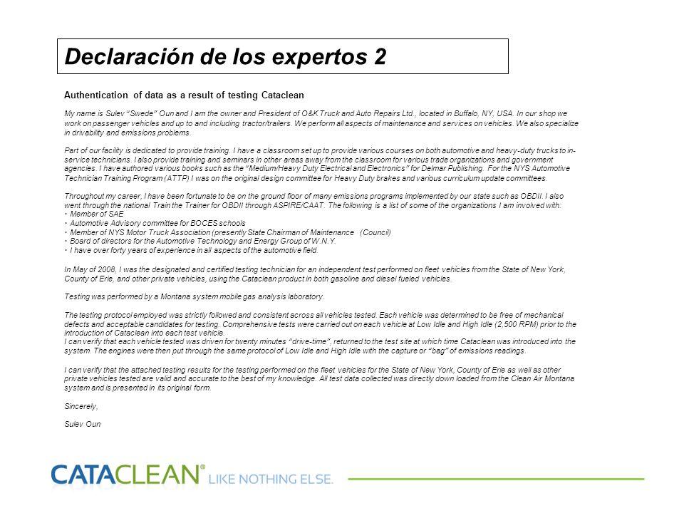 Declaración de los expertos 2