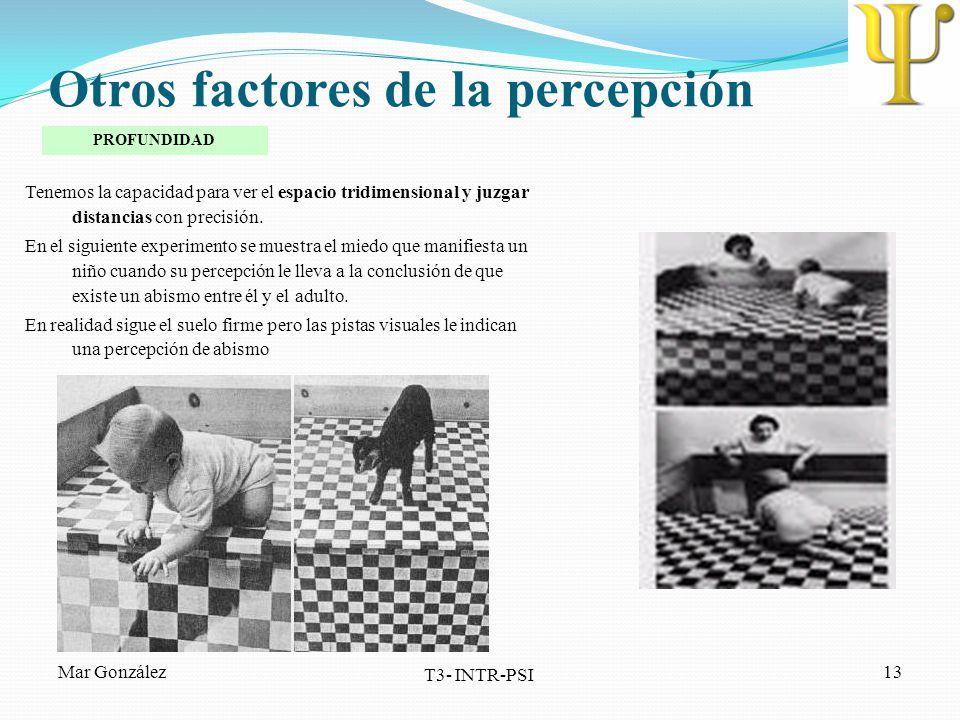 Otros factores de la percepción