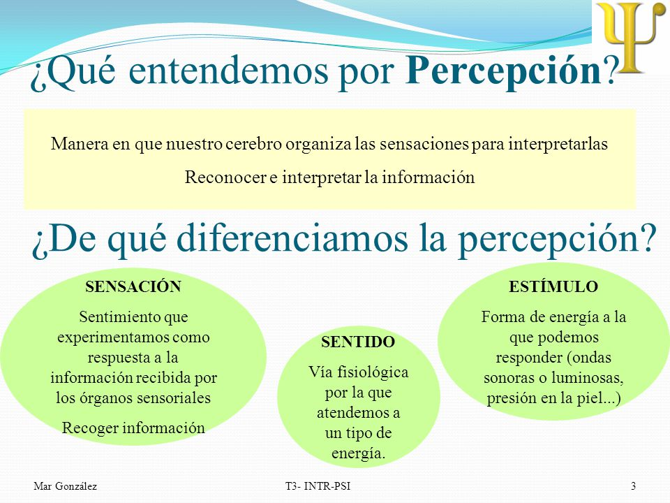 ¿Qué entendemos por Percepción