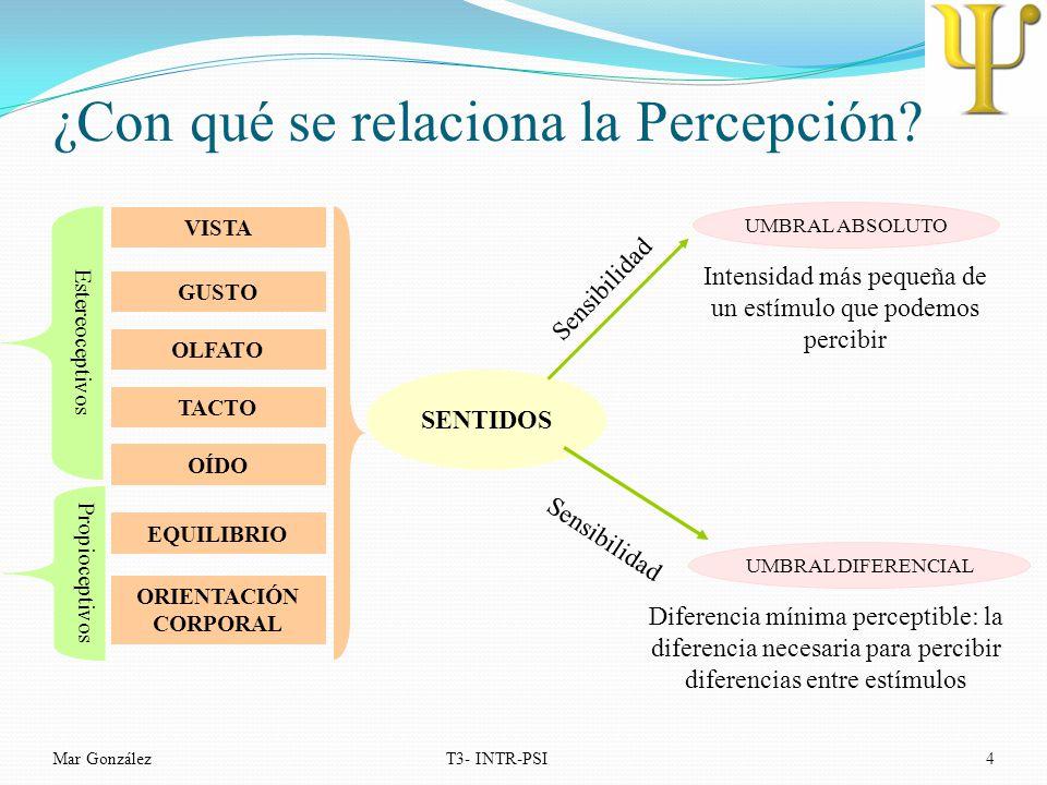 ¿Con qué se relaciona la Percepción