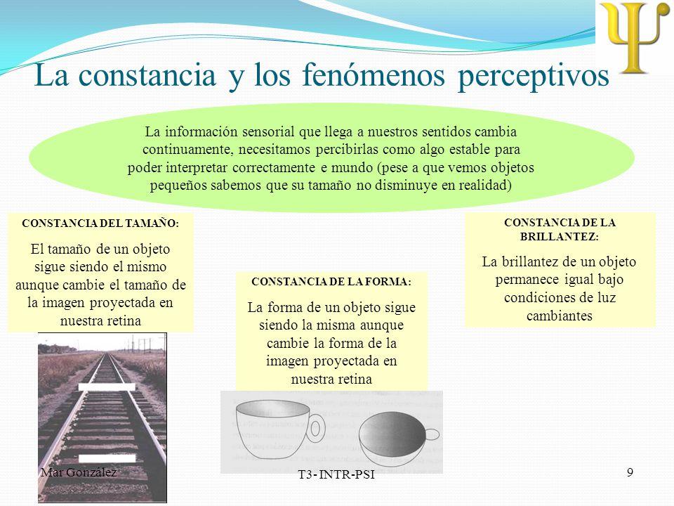 La constancia y los fenómenos perceptivos