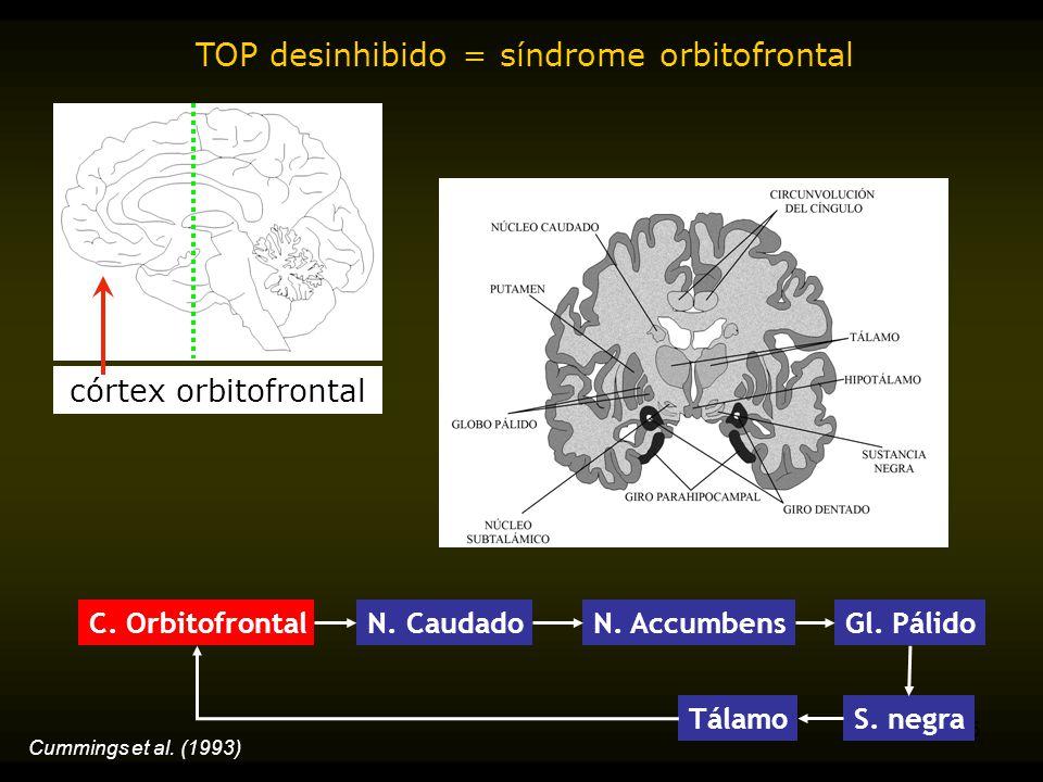 TOP desinhibido = síndrome orbitofrontal