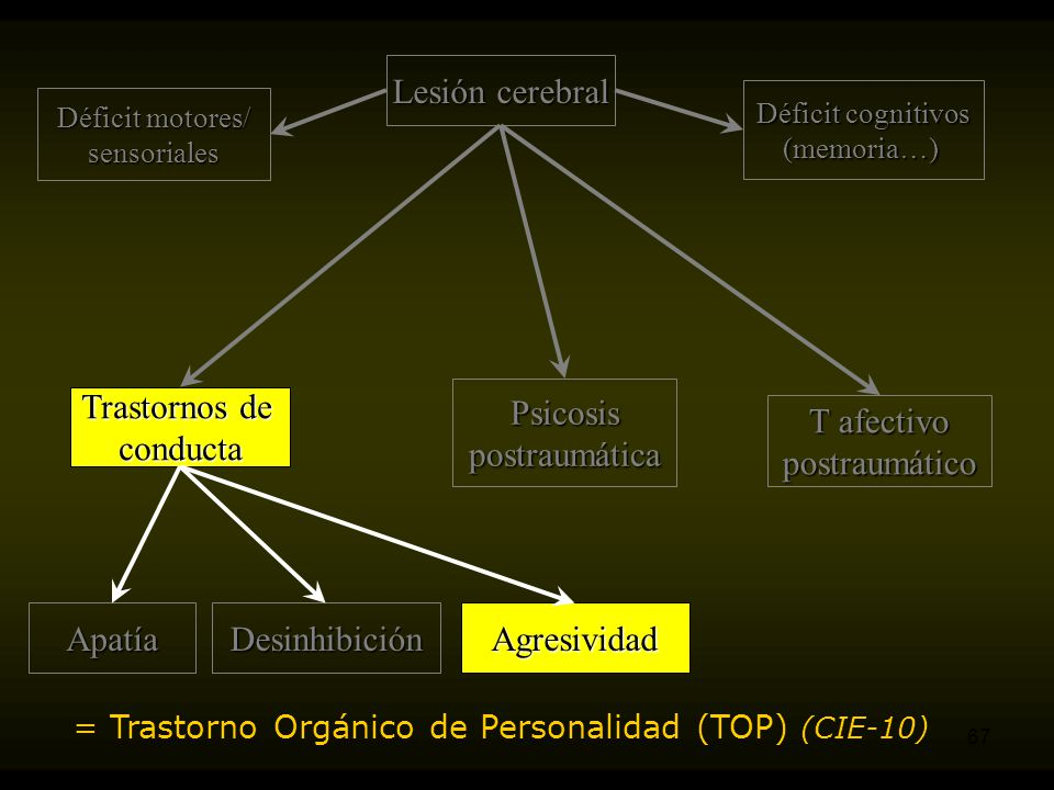 Lesión cerebral Psicosis postraumática Trastornos de conducta